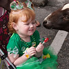 St Patrick's Day Festival 2010- PETTING ZOO & PAINTING FACES :